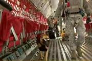 Zuqui, la valiente perra que saltó por tercera vez en paracaídas sin despelucarse