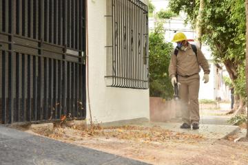 fumigacion muni 1.jpg