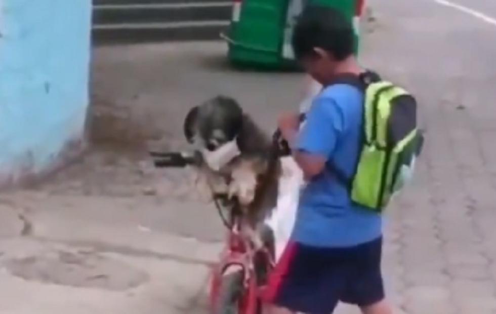 Video viral Un nene le pone barbijo a su perro arriba de una bicicleta
