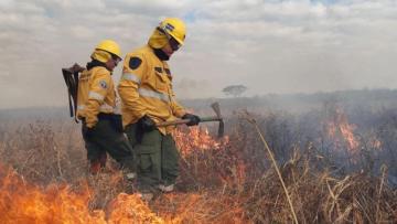 incendios-en-el-delta-20200826-1007479.jpg