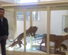 Nuevas Piezas- Museo de Ciencias Naturales (1).jpeg