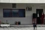 """San Luis del Palmar: perro patriota """"canta"""" cada mañana en el izamiento de la bandera"""