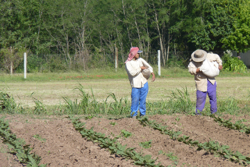 trabajadores rurales.jpg
