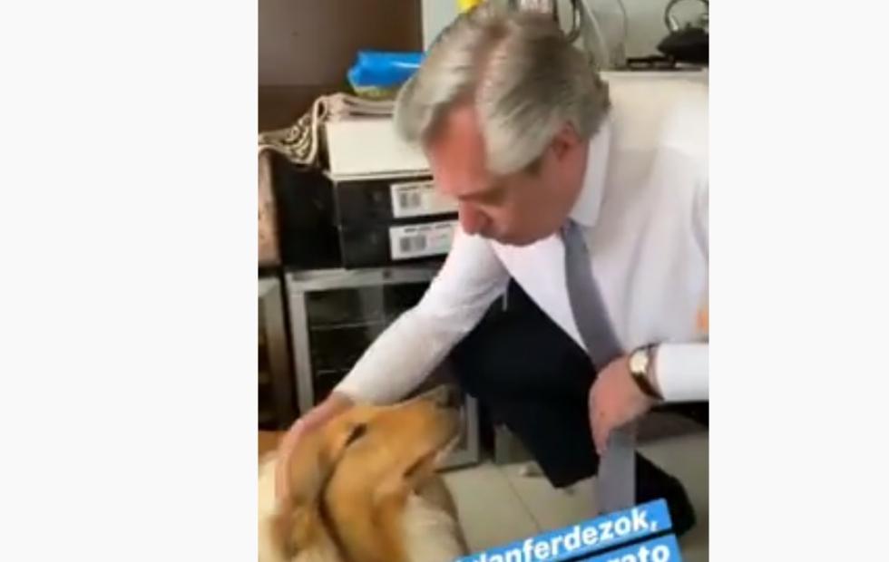 Alberto Fernández publicó videos en Instagram minutos antes de asumir la Presidencia