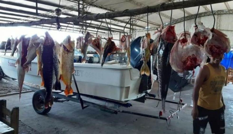 """Corrientes: Citan a declarar a un """"depredador"""" de peces del río Paraná"""
