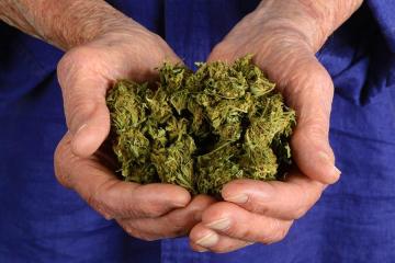 marihuaa.jpg