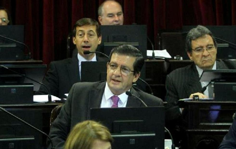 Braillard Poccard rechaza la sesión virtual en el Senado y pretende que el debate sea mixto