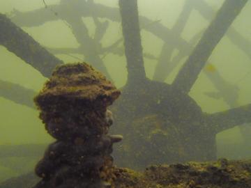 La bajante histórica del Paraná dejó ver un barco hundido hace más de un siglo