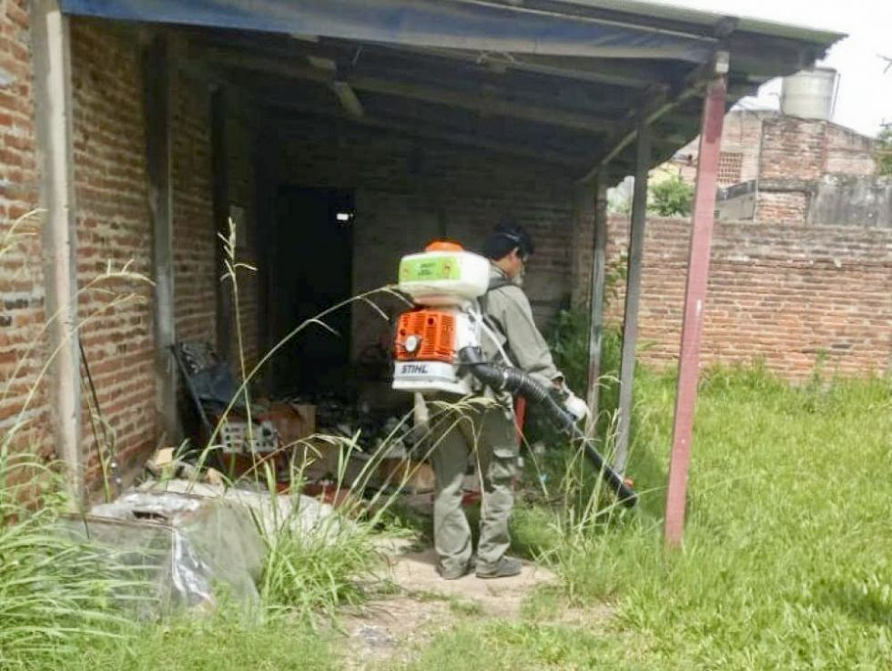dengue en Corrientes.jpg